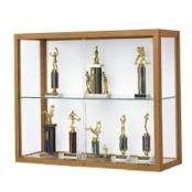 Trophy-Cabinet1.jpg